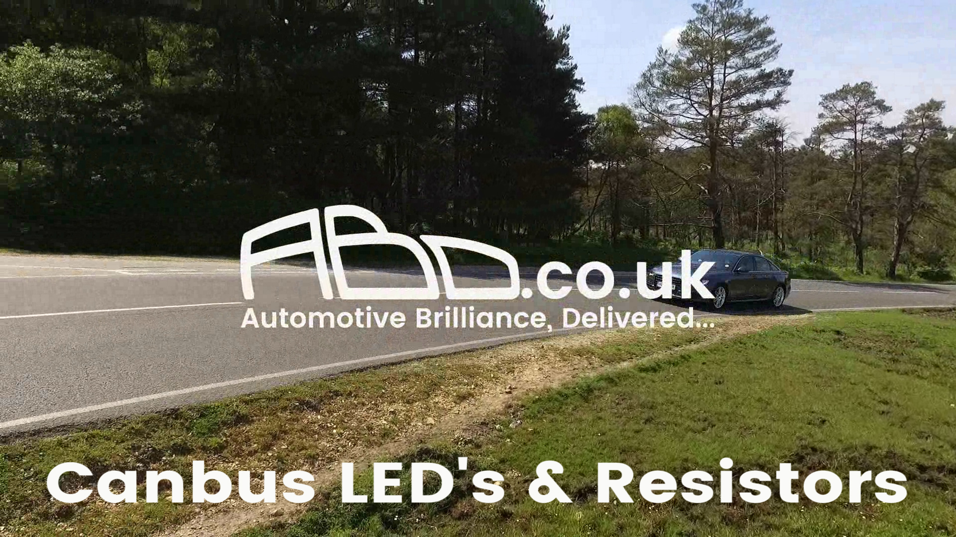 Canbus LEDs and Resistors