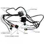 H4 Special Wiring Harness - Car